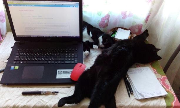 workspace invasion